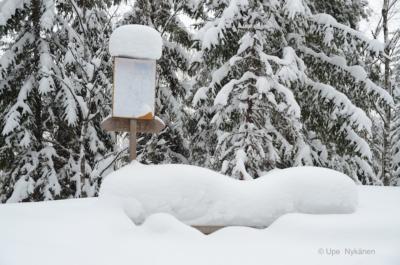 Lumen peittämä opastaulu polun varressa.