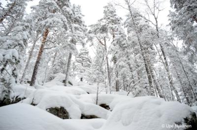 Oravivuoren kalliot talvella