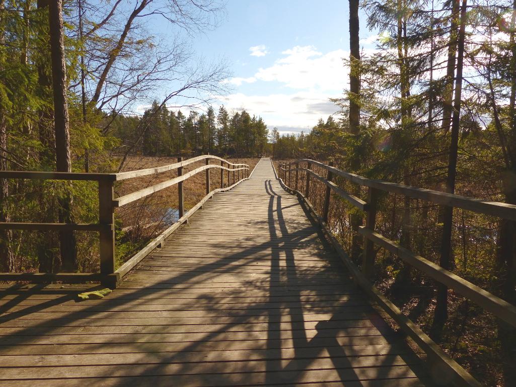 Kurjenrahkan Kansallispuisto Vajosuon Vaellus Retkipaikka