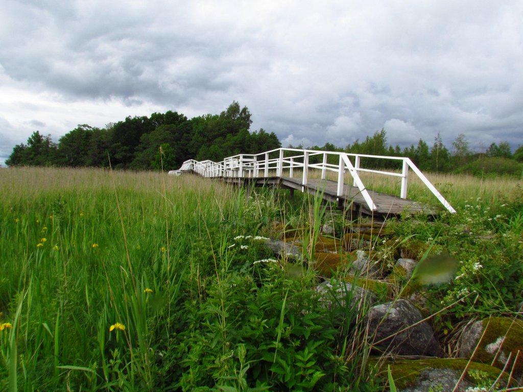 Ramsholmen (17)