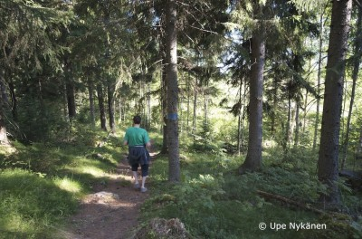 Kävelijä Väisälänmäen metsäpolulla