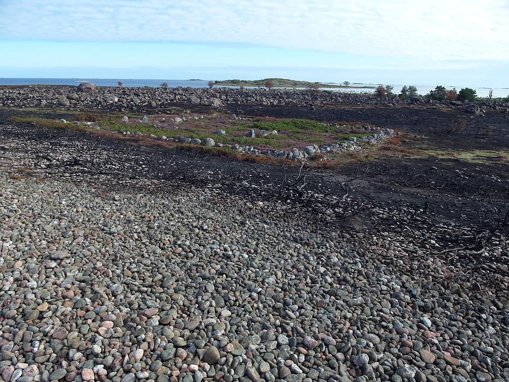 Vanhan kappelin kivikehä erottuu kulotuksen keskeltä itäisessä Jurmossa.