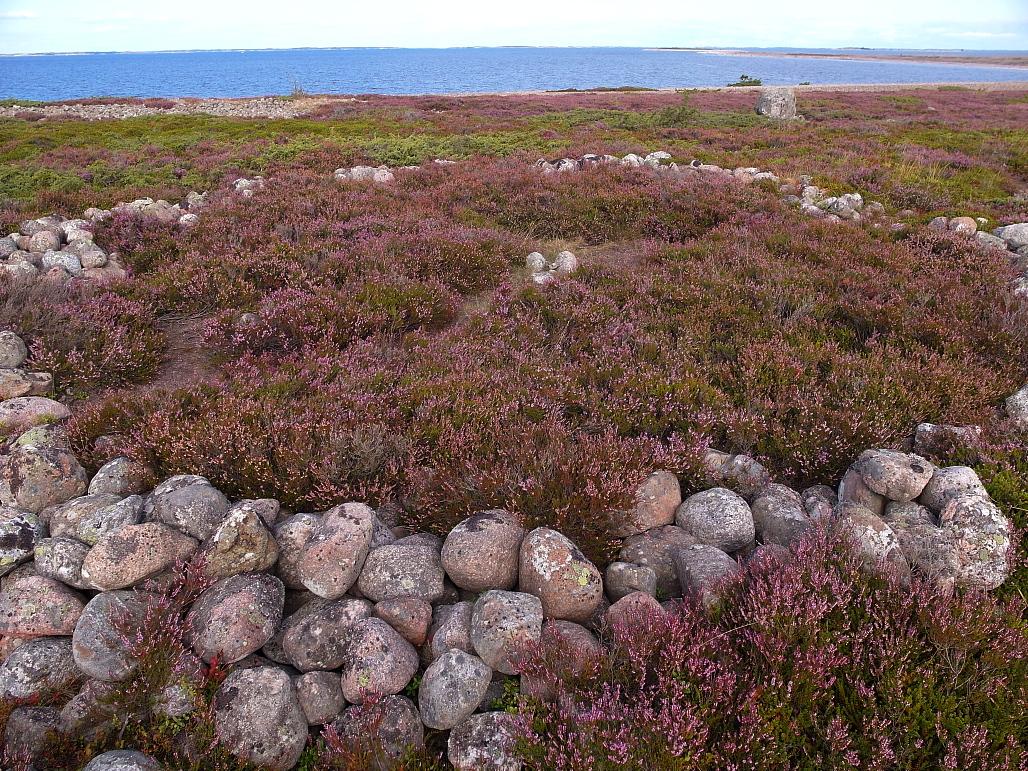 Tämäntyyppisiä kivikehiä on Jurmossa neljä. Sijainnit näkyvät kartalla, maastossa opasteita ei ole perille saakka.