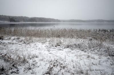 Lammassaaren rantaa marraskuussa, Imatra