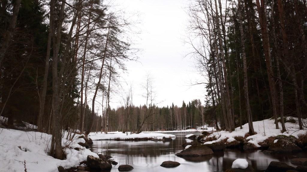 Kosken alajuoksulla, Laanin ja Kattilan välillä, veden virtaama on hidas ja tunnelma rauhallinen.