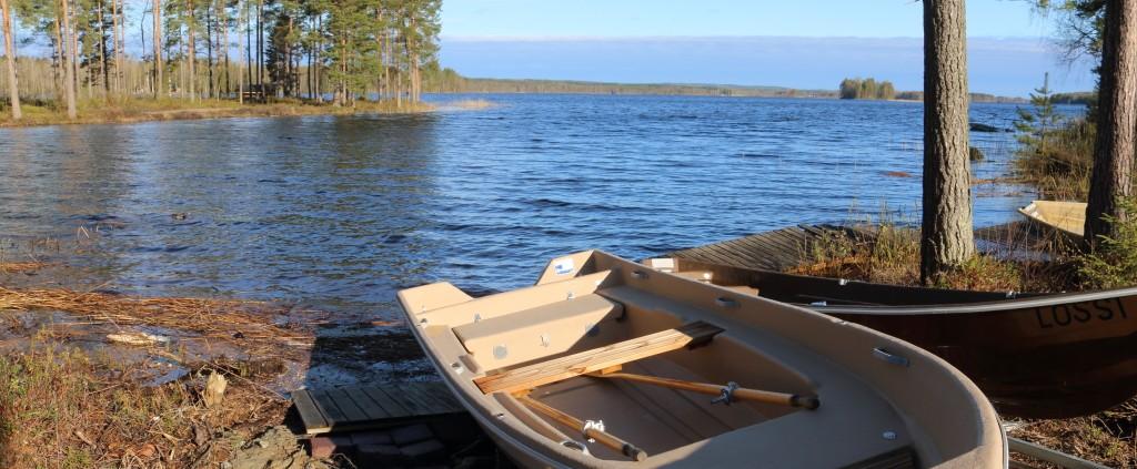 (C) Mikko Lemmetti
