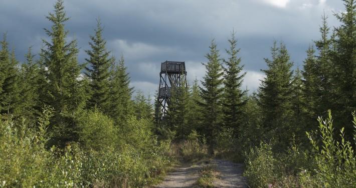 Perkausvuoren näkötorni, Kivijärvi