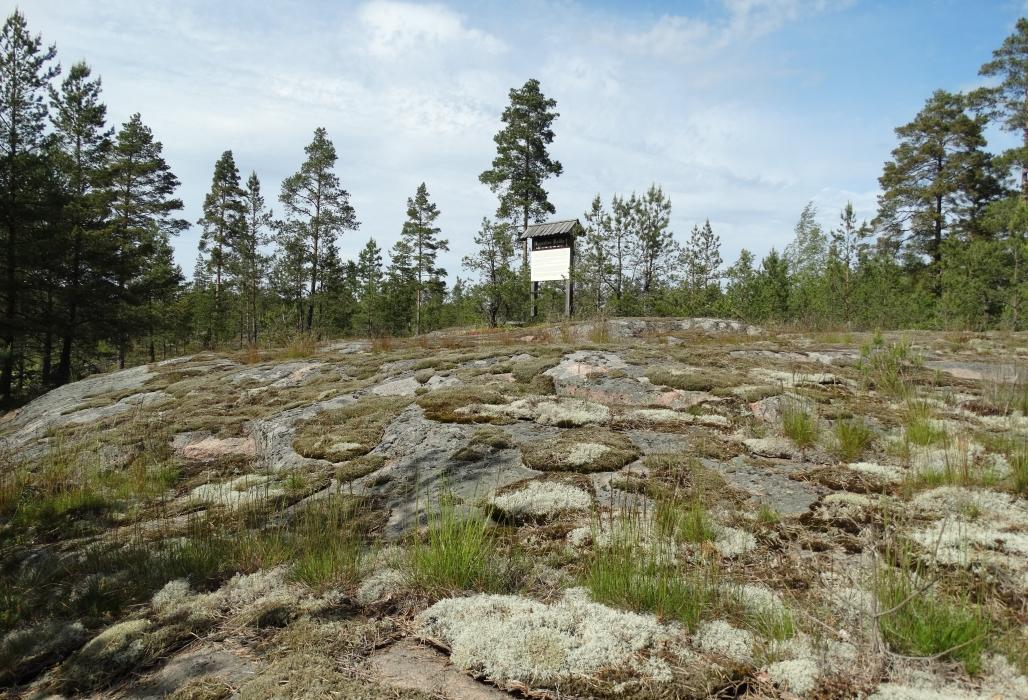 Taivassalon Kyynelten Kallio Retkipaikka