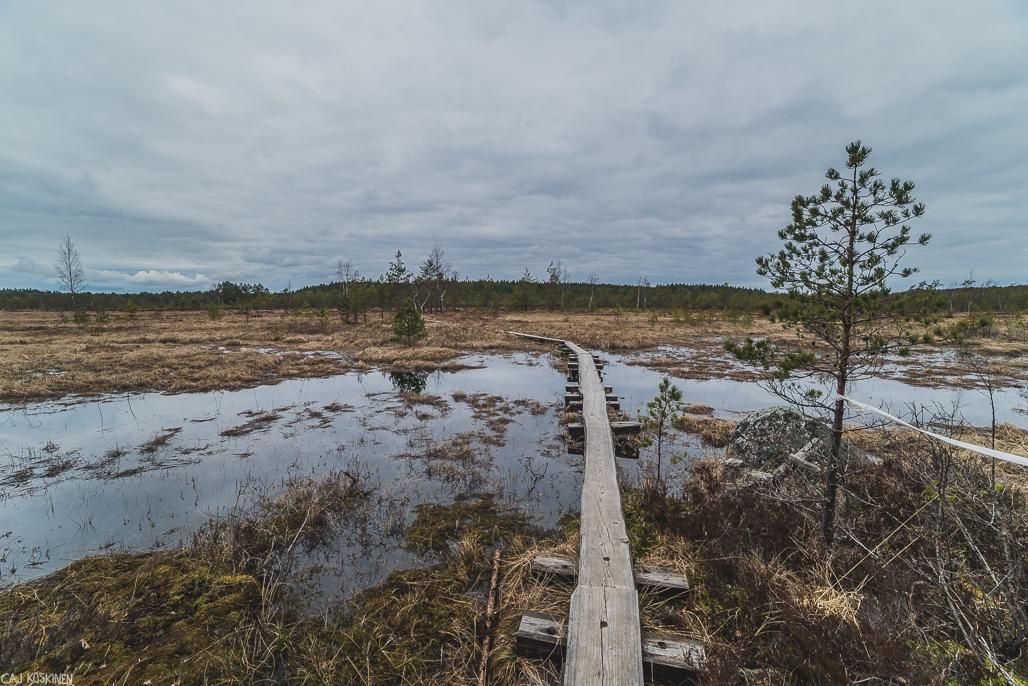 Puolakkajärven länsipuolisen puron ylitystä.