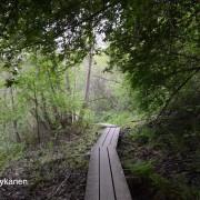Tourujoen pitkospuita, Jyväskylä