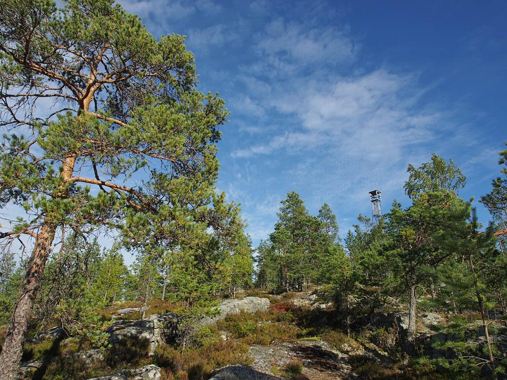 Pyhävuoren karulla huipulla seisoo vanha palovartijan torni, johon ei kuitenkaan pääse turvallisesti kiipeämään.
