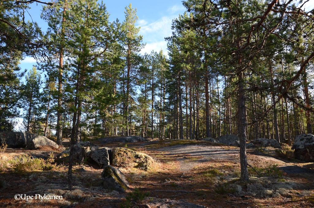 Jääskelän luontopolun kallioita