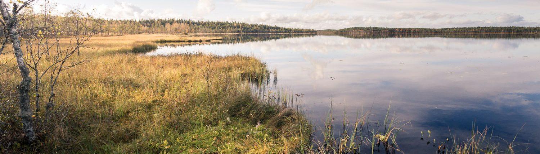 Salamajarven Kansallispuisto Retkipaikka