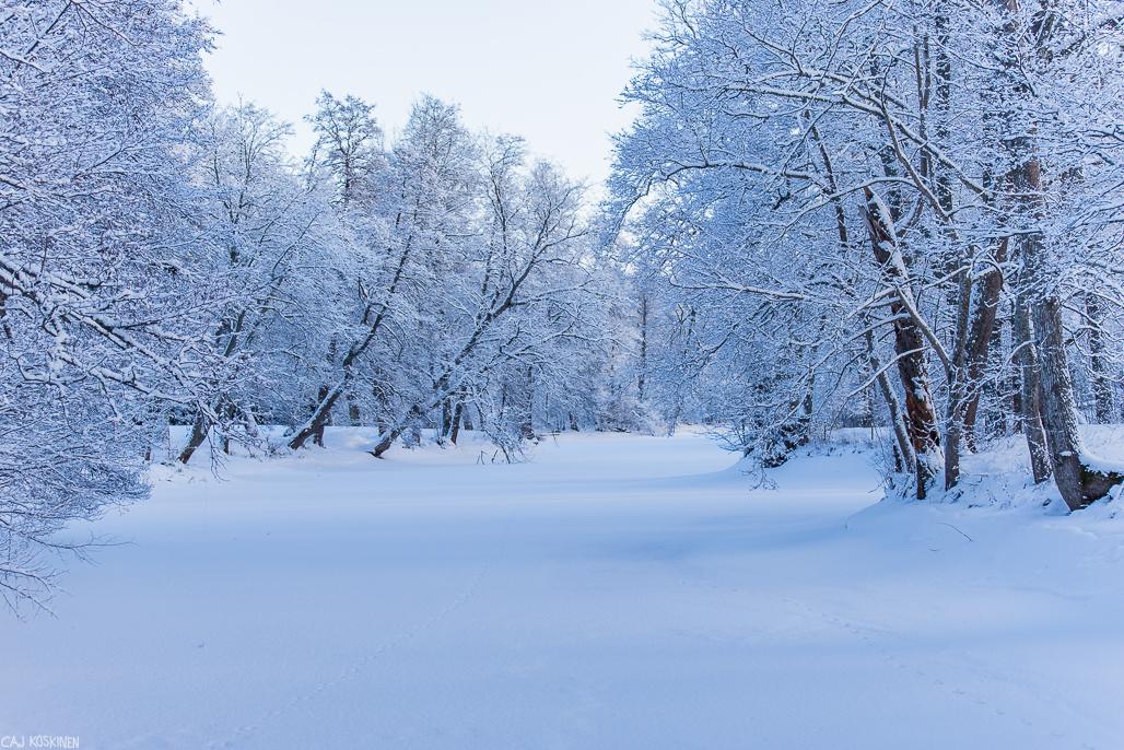 Puroja ja talvista suvantoa ruukkikylässä.
