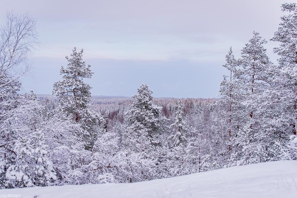 Näkymää Hamarijärven yli.