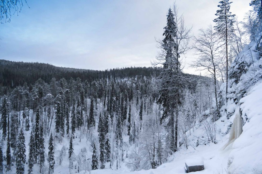 Näkymä Ruskean Virran putoukselta. Kuva: Anniina Pakkasmaa.