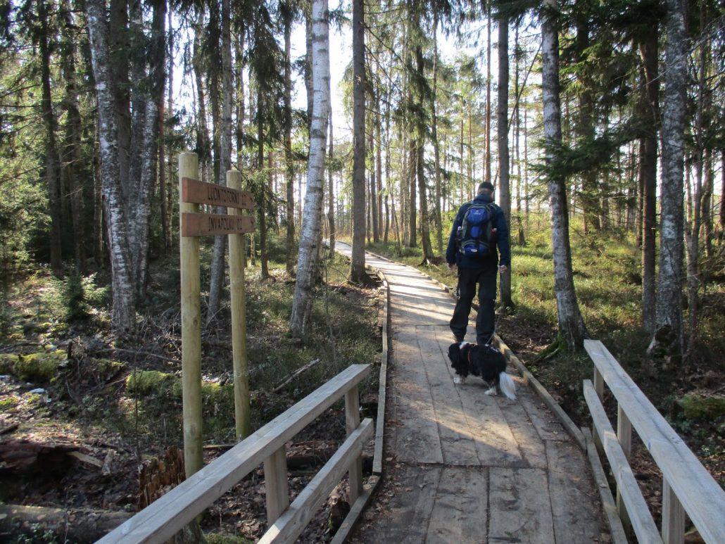 Torronsuo on yksi perheen lempikohteista Suomessa.