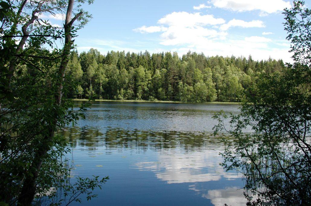 Bisajärvi (17)