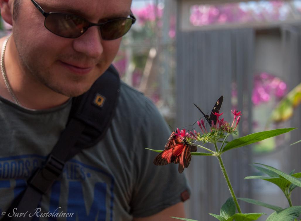 Botania on täynnä upeita trooppisia perhosia. CX-25-laseilla niistäkin löytyy uusia värisävyjä.