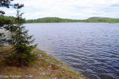 Lievestuoreenjärvi