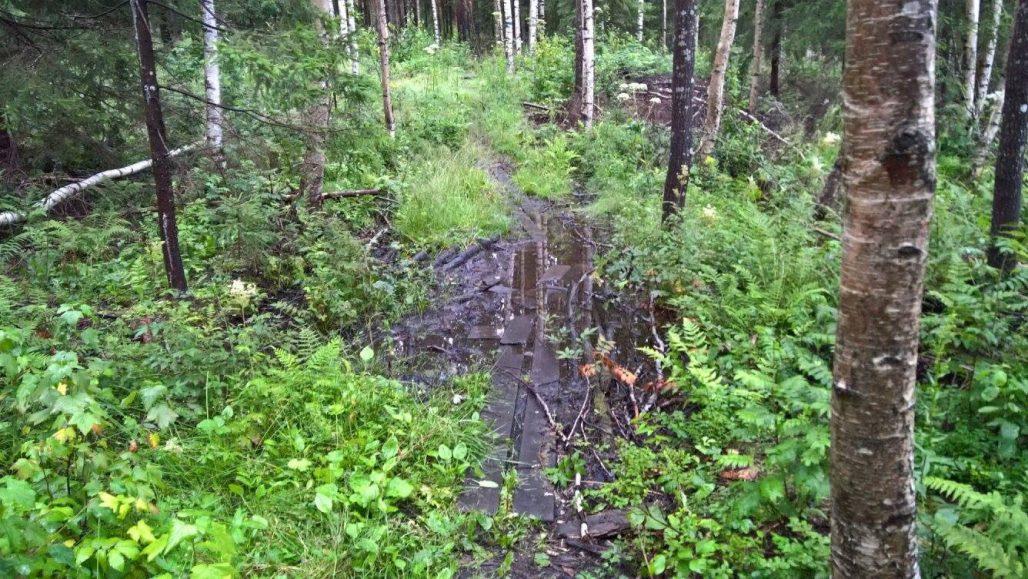 Reitin pahin kohta märällä kelillä on kierrettävissä, mikäli polulle siirtyy vasta Ojaniitynpuron kohdalta.