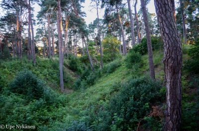 Linnamäen vallihauta, Porvoo