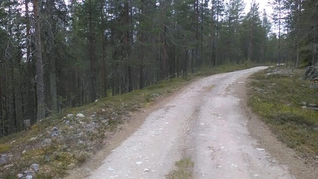 Hirsiniemi: alkumatkan hiekkatietä harjulla