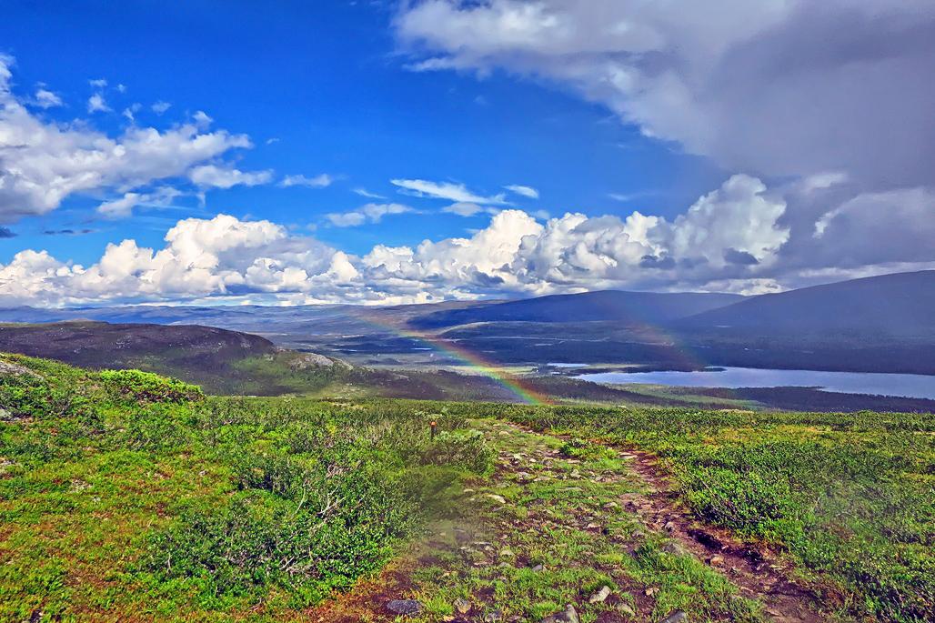 Sateenkaari Mallan luonnonpuistossa