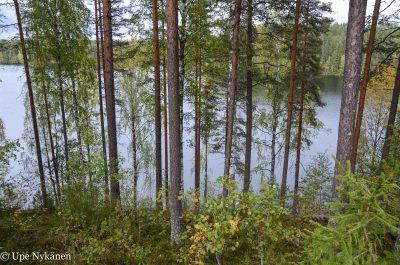 Harinjärvi, Kinttupolku, Liperi