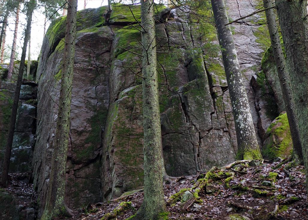 Kauhalan jyrkänteitä Kirkkonummen Kauhalan jyrkänteitä Kuva: Terhi Jaakkola