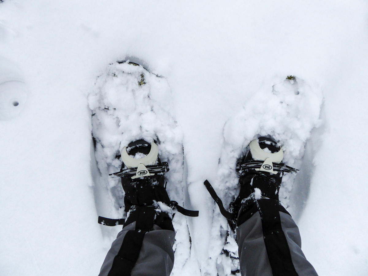 Tarralumiset lumikengät