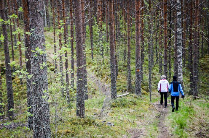 Kävelijöitä Pahakalan lenkillä