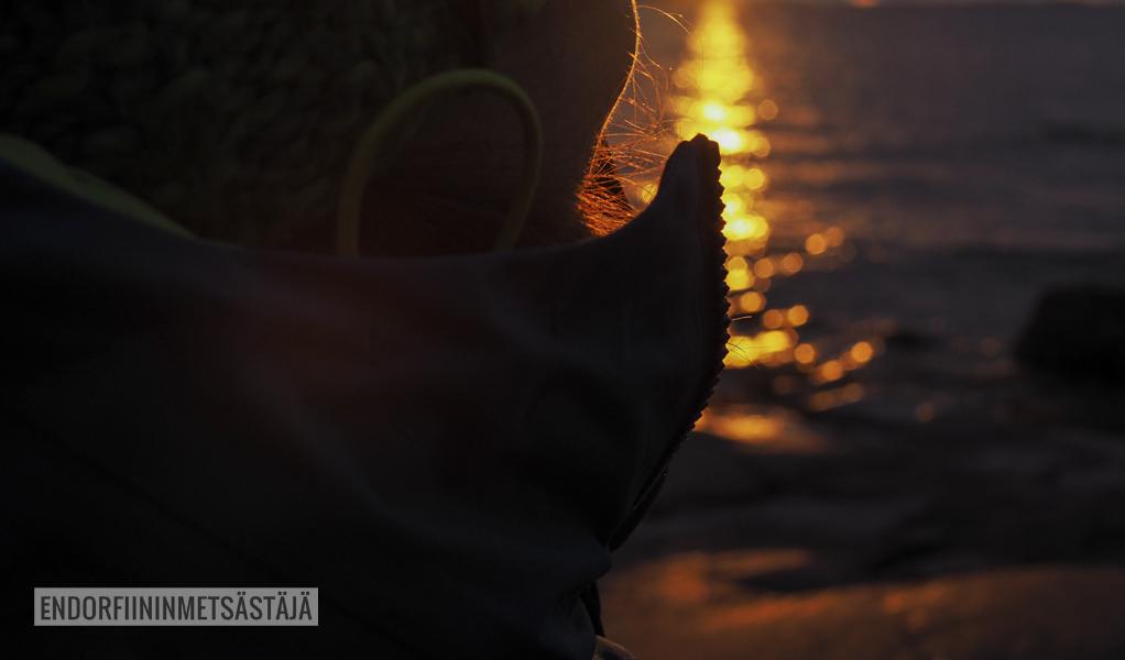 Lauttasaari marraskuussa Kuva: Tom Toivonen