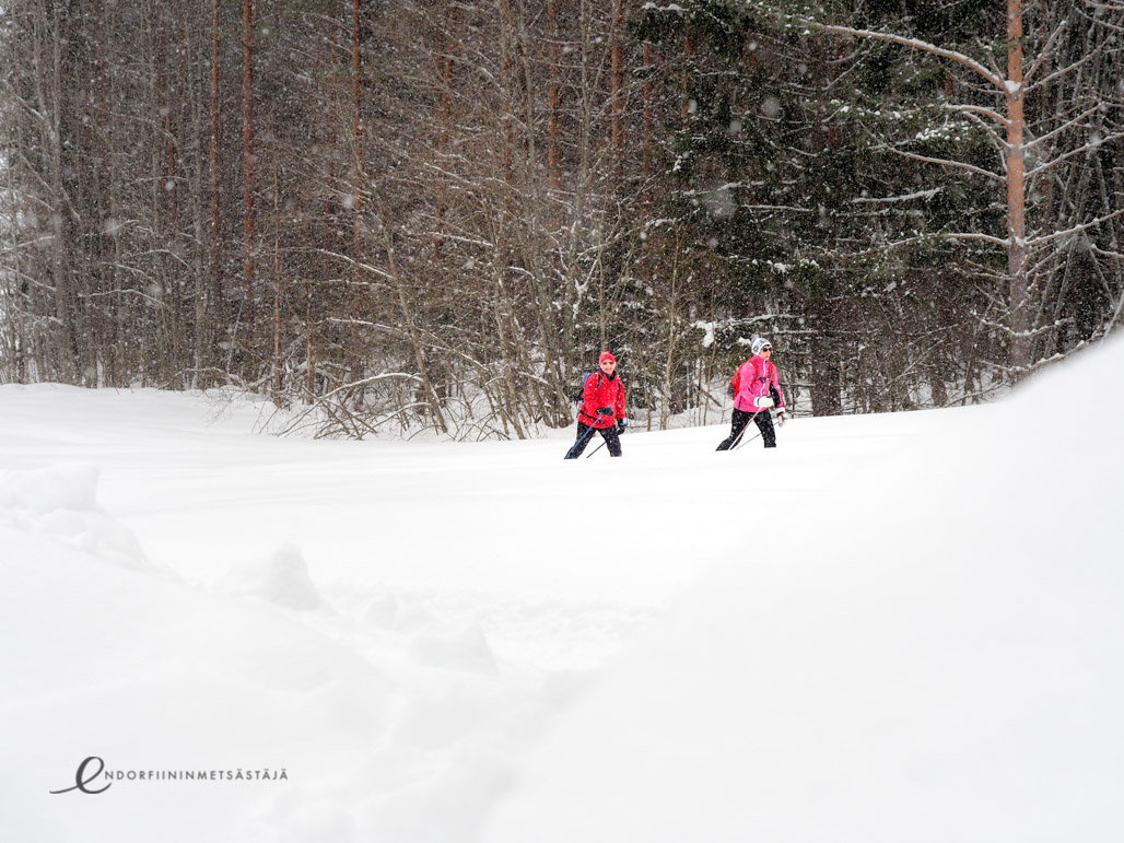 Majatalosta majataloon -hiihtovaellus Pohjois-Karjalassa Kuva: Terhi Jaakkola