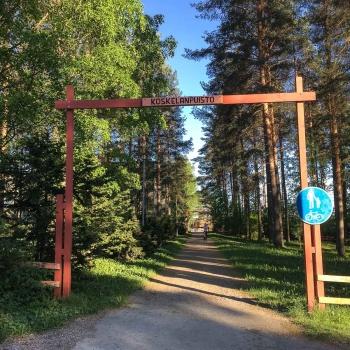 Äänekosken Koskelanpuisto, alppiruusupuisto