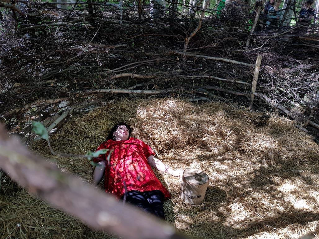 Lammassaaren esteetön pitkospolku Helsingin Pornaistenniemessä Kuva Terhi Jaakkola