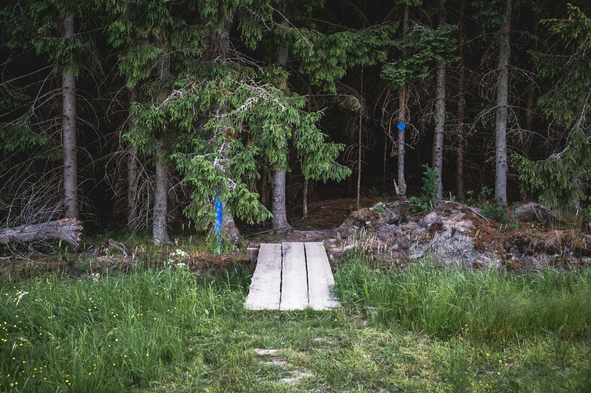 Pähkinäpolku Kirkkonummi Kuva Tomi Pohja