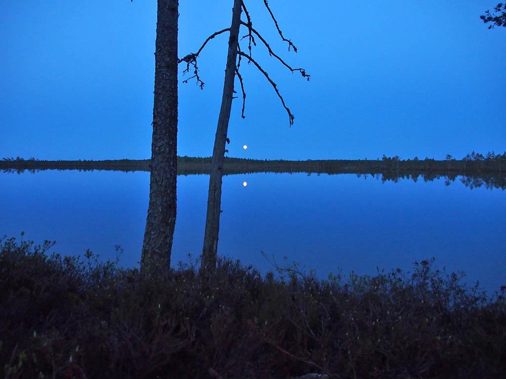 Öinen järvimaisema