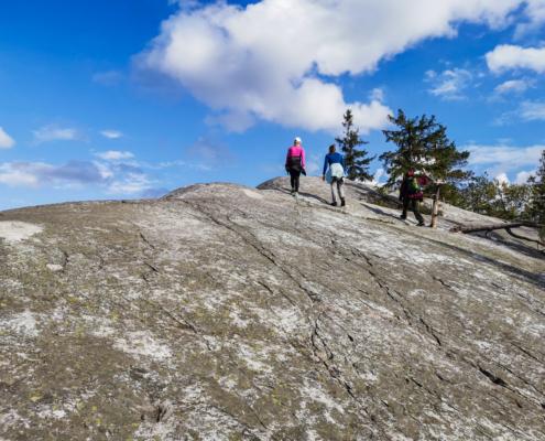Paha-Kolille kiipeämässä - Pohjois-Karjala retkeilyhelmet Kuva: Terhi Ilosaari