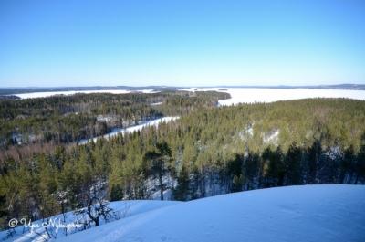 Luminen talvimaisema metsän yli Lievestuoreenjärvelle.
