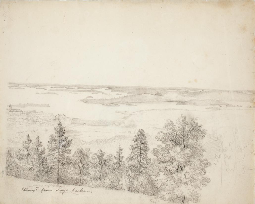 näköala Puijolta kohti Kuopiota. Etualalla puita, taustalla kaupunki ja Kallavesi saaristoineen.