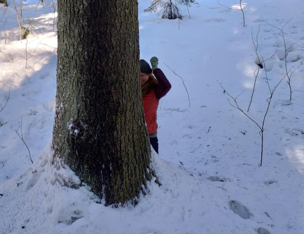 Pieni nainen nauraa ison kuusen takana. Luminen maisema. Puun runko on tumma. Lumessa on jalanjäljet.