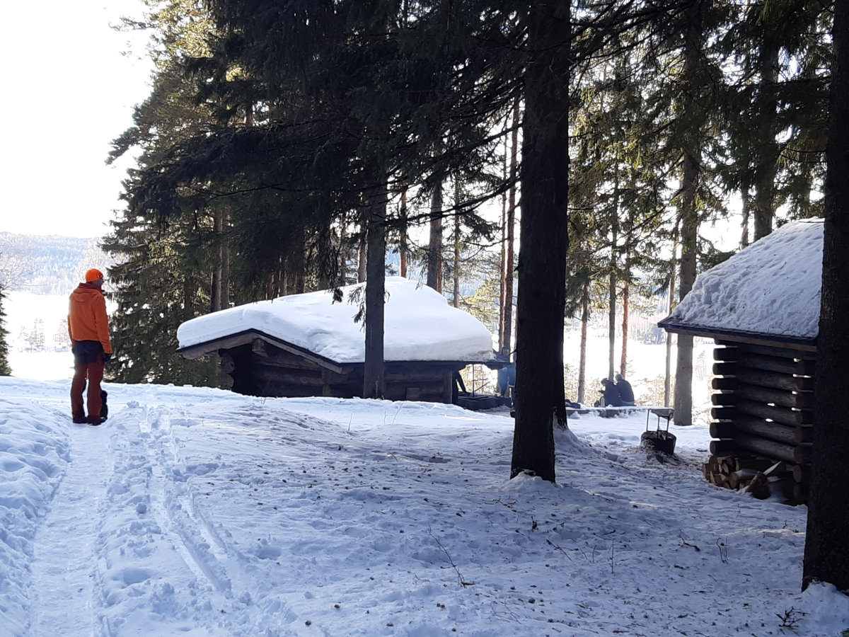Retkeilijä, laavu ja kuusia talvisessa Puijon maisemassa.