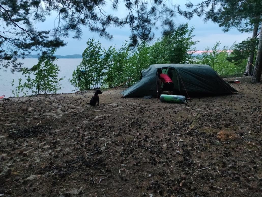 teltta rannalla. Koira odottaa teltan vierellä. Ihminen teltan suuaukolla.